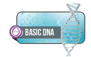 thetahealing-basic-dna